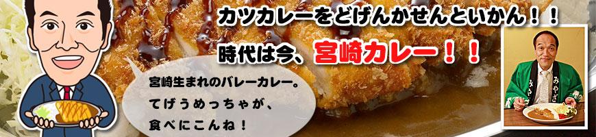 東国原元宮崎県知事・宮崎カレーの「バレーカレー」の広告プロデュース&プロモーション